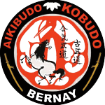 logo-bernay